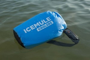 IceMule3X-1024x682